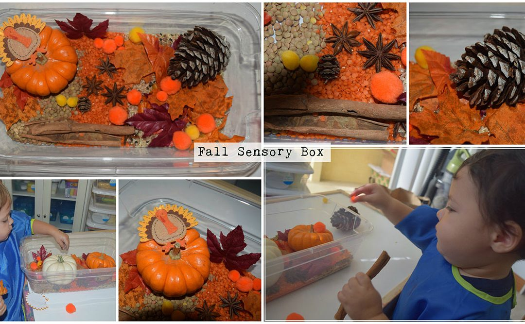 Fall/Autumn Sensory Box